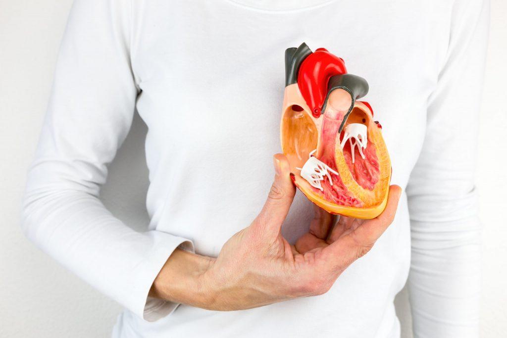 دکتر قلب بندرعباس